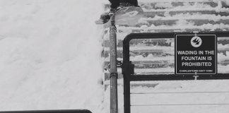 Prime-Snowboarding-Arbor-Logs-Header-2