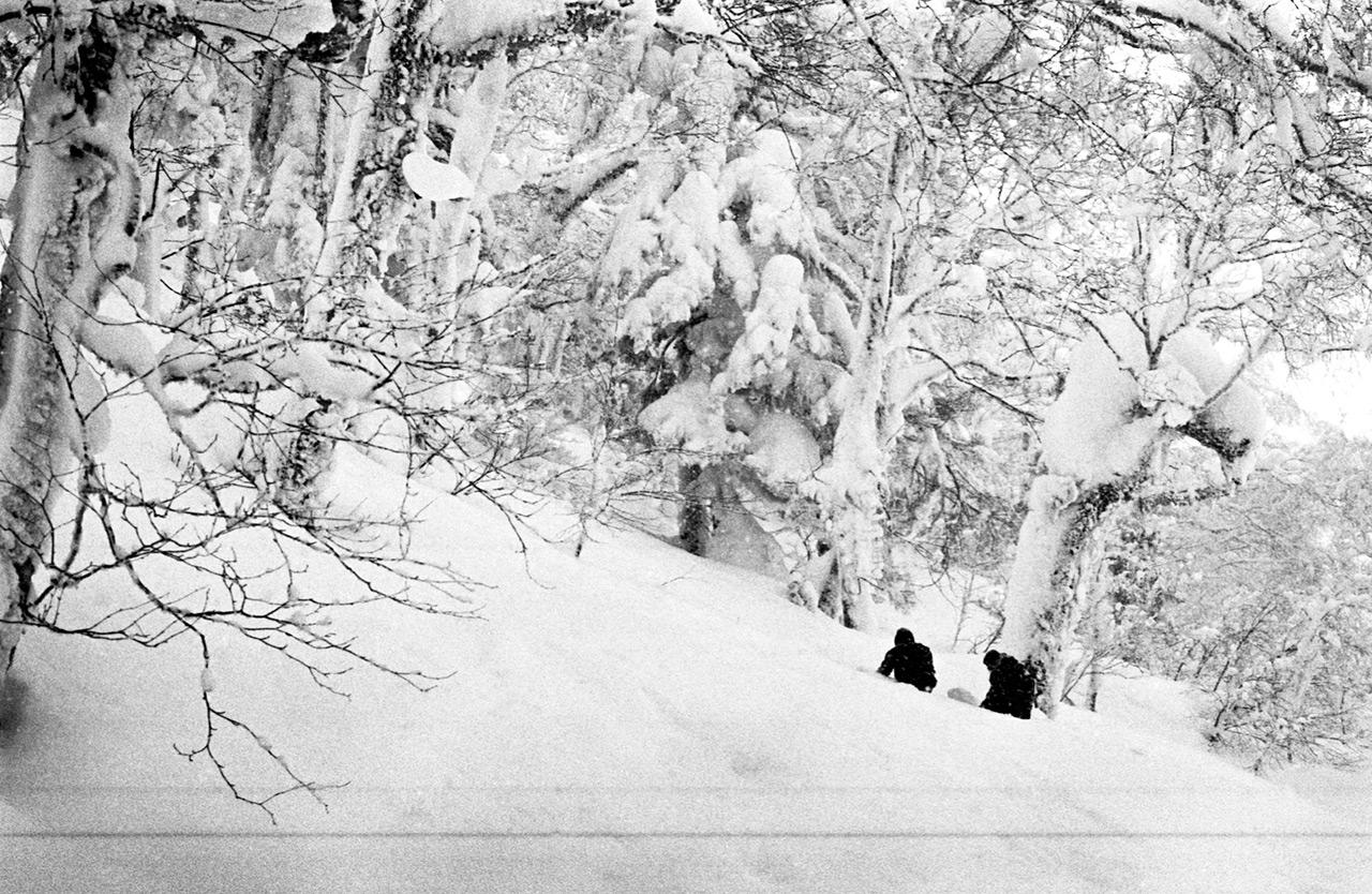 Wann ist viel Schnee zuviel Schnee? | © Theo Acworth