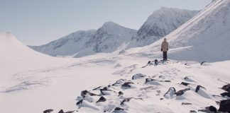 Prime-Snowboarding-Antti-Autti-Arctic-Lights-02