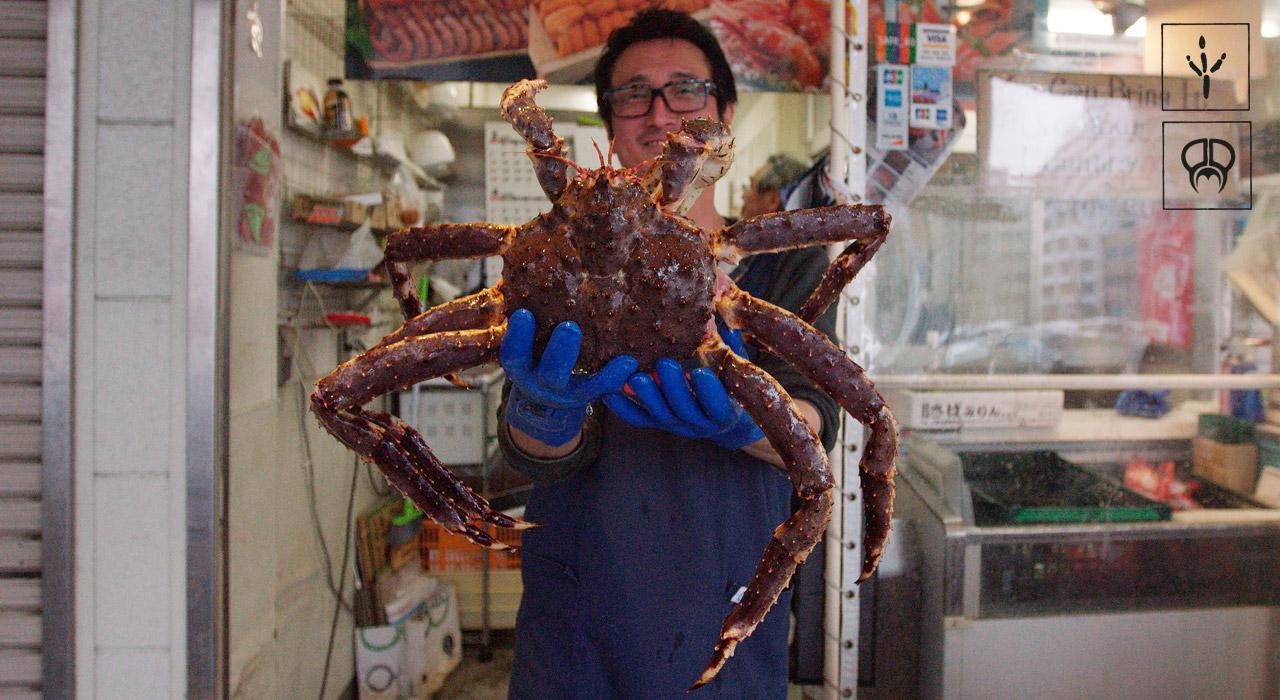 Big-ass Krabbe! | © PMP
