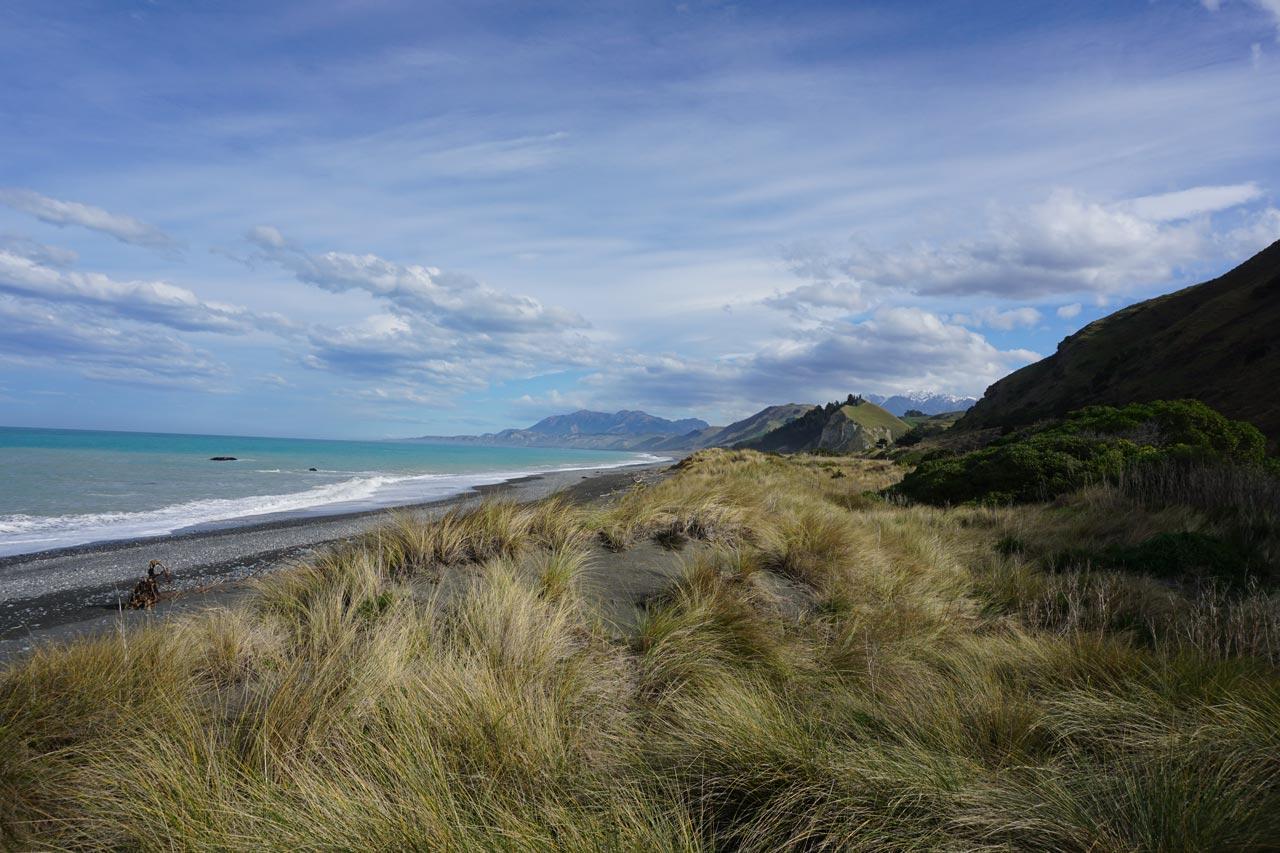 Die Südinsel Neuseelands |©Bianca Klausner