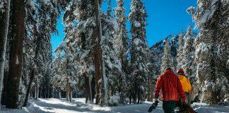 Snowboard Kaufberatung