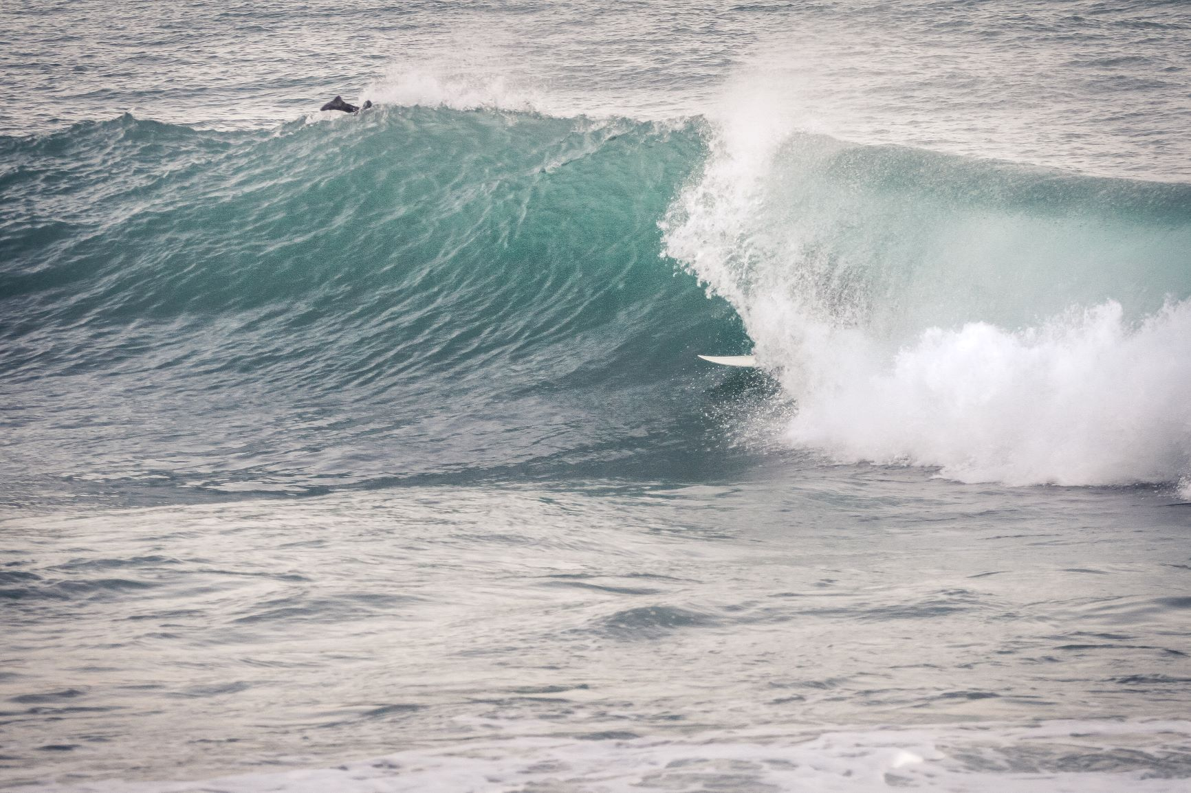 Surf und Snowtrip